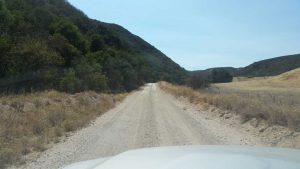 dirt road leading to williams hill